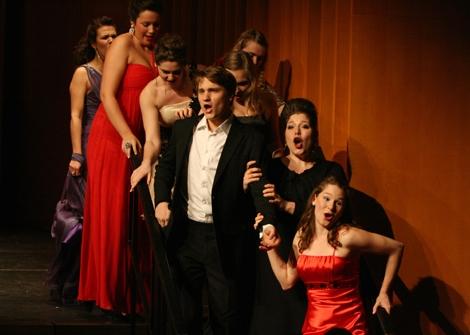 Operettenkonzert So, 08.02.2015, 11:00 und 16:00 Uhr,HMT, Grassistr. 8, Großer Saal